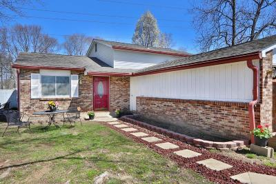 Columbus Single Family Home For Sale: 2914 Blarefield Drive