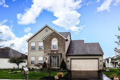 Westerville Single Family Home For Sale: 6695 Deagle Drive