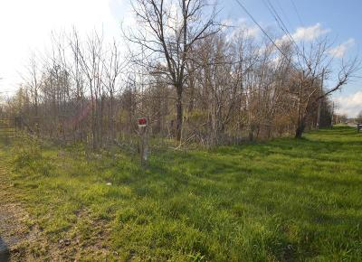 Pickerington Residential Lots & Land For Sale: 9225 Carroll Northern Road