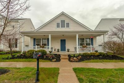 Westerville Single Family Home For Sale: 5988 Oswald Street