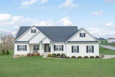 Franklin County, Delaware County, Fairfield County, Hocking County, Licking County, Madison County, Morrow County, Perry County, Pickaway County, Union County Single Family Home For Sale: 318 Long Trail