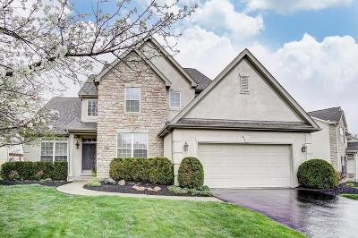 Westerville Single Family Home For Sale: 7654 Park Bend Drive
