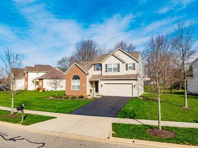 Westerville Single Family Home For Sale: 7061 Upper Cambridge Way