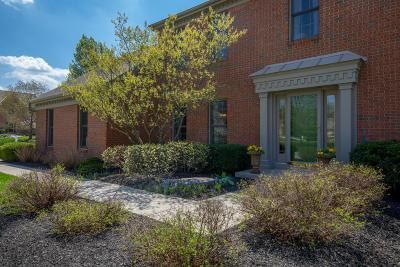 Westerville Single Family Home For Sale: 5810 Saint George Avenue