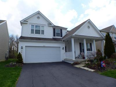 Blacklick Single Family Home For Sale: 8553 Haleigh Woods Drive