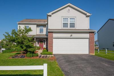 Delaware OH Single Family Home For Sale: $264,900