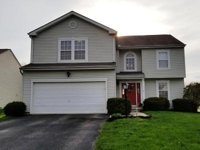 Franklin County, Delaware County, Fairfield County, Hocking County, Licking County, Madison County, Morrow County, Perry County, Pickaway County, Union County Single Family Home For Sale: 123 Georges Creek Drive