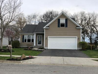 Franklin County, Delaware County, Fairfield County, Hocking County, Licking County, Madison County, Morrow County, Perry County, Pickaway County, Union County Single Family Home For Sale: 345 Sycamore Drive