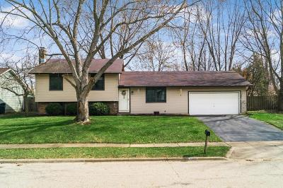 Franklin County, Delaware County, Fairfield County, Hocking County, Licking County, Madison County, Morrow County, Perry County, Pickaway County, Union County Single Family Home For Sale: 1290 Addison Drive