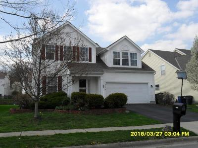 Franklin County, Delaware County, Fairfield County, Hocking County, Licking County, Madison County, Morrow County, Perry County, Pickaway County, Union County Single Family Home For Sale: 8029 Lazelle Woods Drive