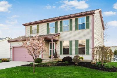Franklin County, Delaware County, Fairfield County, Hocking County, Licking County, Madison County, Morrow County, Perry County, Pickaway County, Union County Single Family Home For Sale: 1119 Oxfordshire Drive