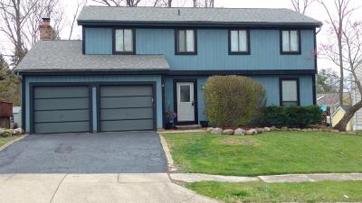 Gahanna Single Family Home For Sale: 3853 Blueberry Hollow Road