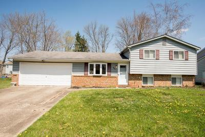 Pickerington Single Family Home Contingent Finance And Inspect: 394 7 Pines Drive