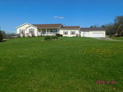 Rushville Single Family Home Contingent Finance And Inspect: 7066 Stage Coach Road NW