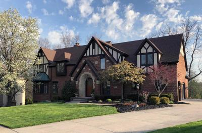 Dublin Single Family Home For Sale: 8518 Stonechat Loop