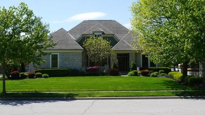 Grove City Single Family Home For Sale: 2485 Milligan Grove