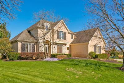 Blacklick Single Family Home Contingent Finance And Inspect: 7459 Spanish Bay Court