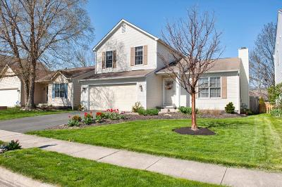 Lewis Center Single Family Home Contingent Finance And Inspect: 8573 Olenbrook Drive