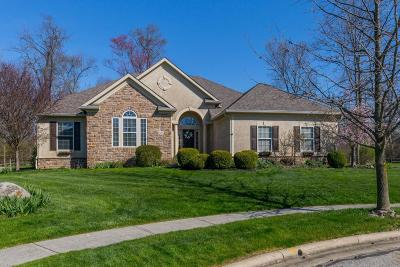 Blacklick Single Family Home Contingent Finance And Inspect: 2857 Langly Court