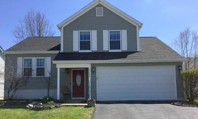 Hilliard Single Family Home Contingent Finance And Inspect: 5139 Hidden View Drive