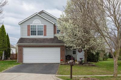 Hilliard Single Family Home Contingent Finance And Inspect: 5829 Trailwater Lane
