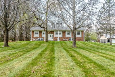 Pataskala Single Family Home For Sale: 9608 Watkins Road SW