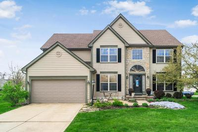 Powell Single Family Home Contingent Finance And Inspect: 7238 Scioto Chase Boulevard