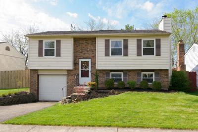 Dublin Single Family Home Contingent Finance And Inspect: 3173 Strathburn Court