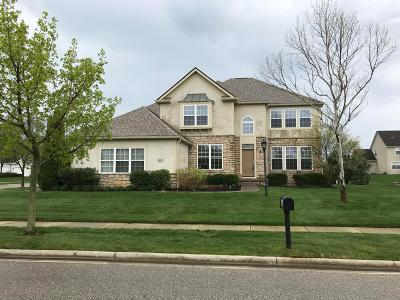 Dublin Single Family Home Contingent Finance And Inspect: 6651 Drury Road