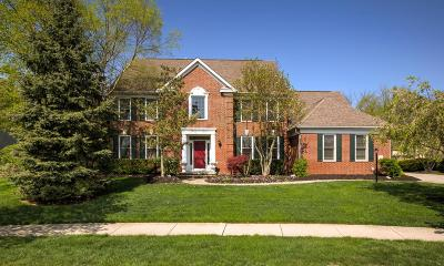 Dublin Single Family Home Contingent Finance And Inspect: 6839 McDougal Court