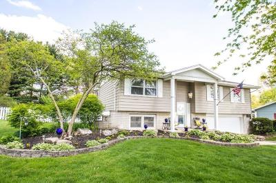 Pickerington Single Family Home Contingent Finance And Inspect: 330 Lockville Road
