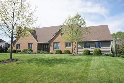 Canal Winchester Single Family Home Contingent Finance And Inspect: 7942 Spring Mill Drive NW