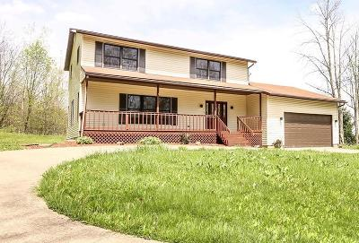 Howard Single Family Home Contingent Finance And Inspect: 136 Northridge Heights Drive