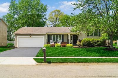 Gahanna Single Family Home Contingent Finance And Inspect: 457 Theori Avenue