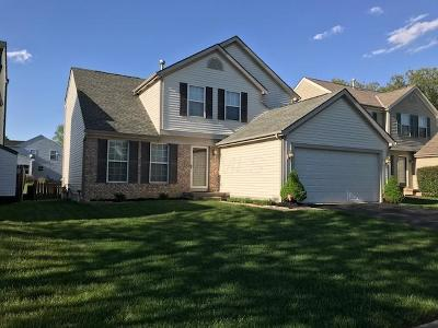 Blacklick Single Family Home Contingent Finance And Inspect: 534 Lamesa Drive