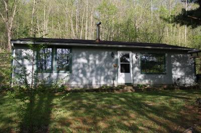 Single Family Home For Sale: 32010 County Road 368