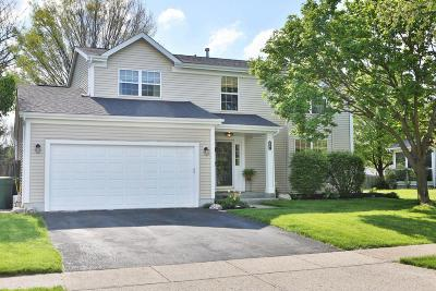 Hilliard Single Family Home Contingent Finance And Inspect: 2961 Carlsbad Drive