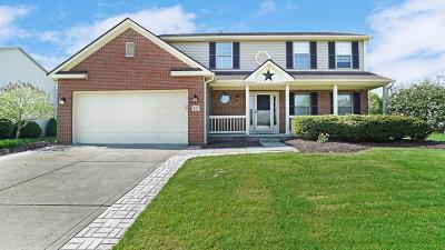 Newark Single Family Home Contingent Finance And Inspect: 927 Glyn Jones Court