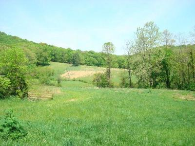 Chillicothe Residential Lots & Land For Sale: 577 Little Rocky Road