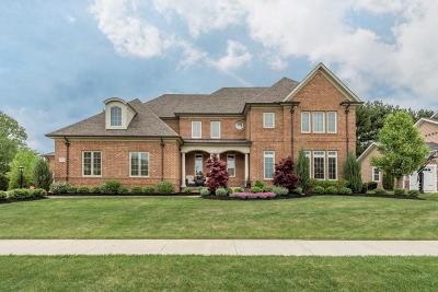 Galena Single Family Home Contingent Finance And Inspect: 5206 Blessing Court