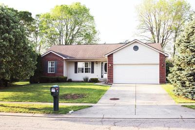 Newark Single Family Home Contingent Finance And Inspect: 564 Wildflower Drive