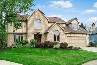 Westerville Single Family Home For Sale: 631 Glacier Pass