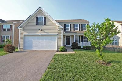 Canal Winchester Single Family Home Contingent Finance And Inspect: 6907 Storm Boat Lane