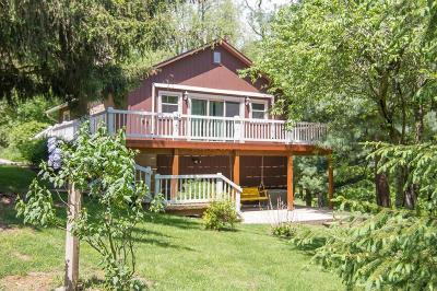 Howard Single Family Home Contingent Finance And Inspect: 213 Green Valley Drive