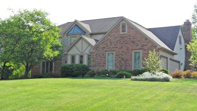 Westerville Single Family Home Contingent Finance And Inspect: 6041 Sugarmaple Drive