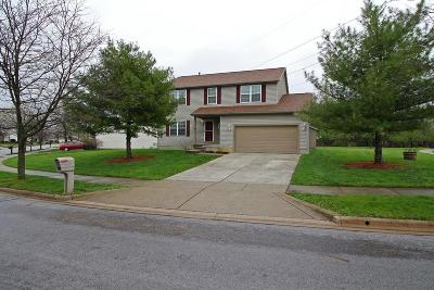 Westerville Single Family Home For Sale: 1119 Hoover Lake Court