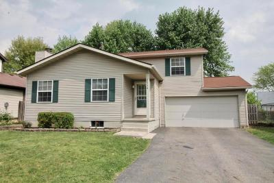 Worthington Single Family Home Contingent Finance And Inspect: 1224 Tranquil Drive
