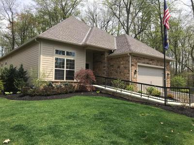 Delaware Condo For Sale: 588 Slate Crossing Drive