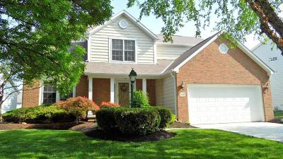 Westerville Single Family Home For Sale: 5845 Pine Wild Drive
