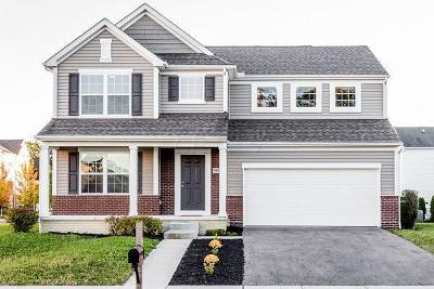 Westerville Single Family Home For Sale: 5947 Fultonham Drive